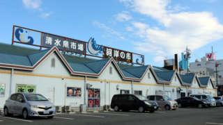 "Grand Fish Market In ""Mecca Of Maguro"", Shimizu! ""Shimizu Fish Market Kashi no Ichi"""